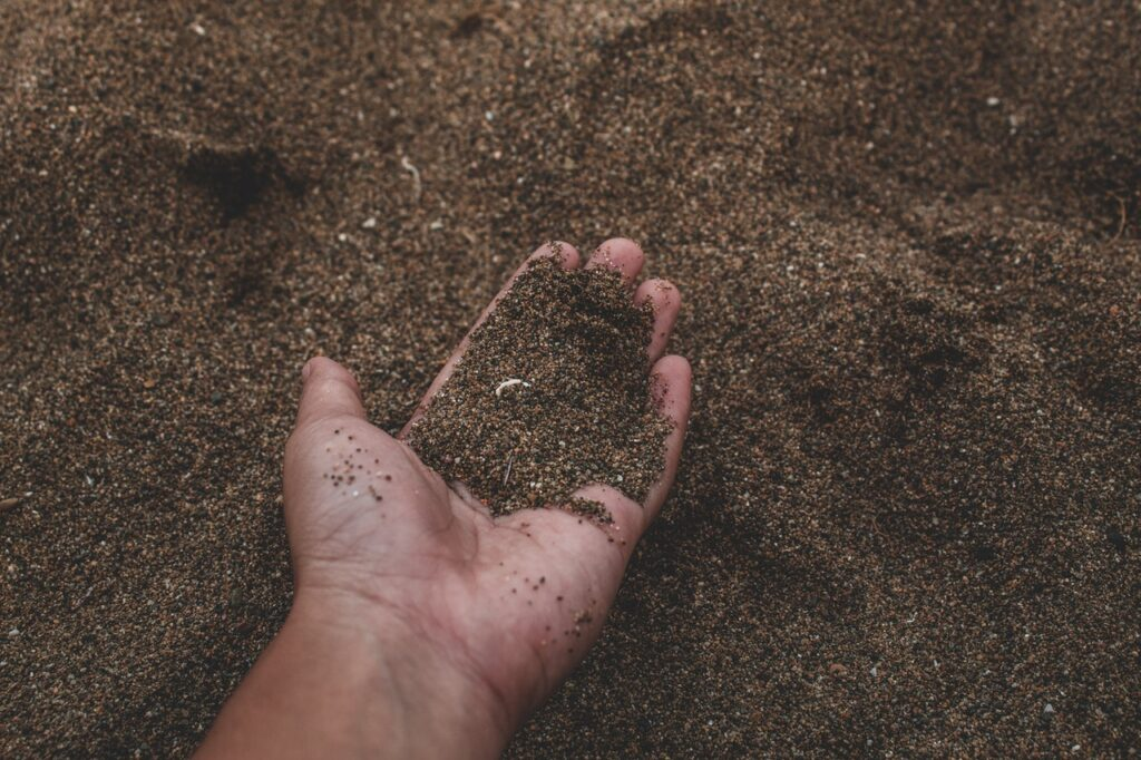 person holding soil in hand